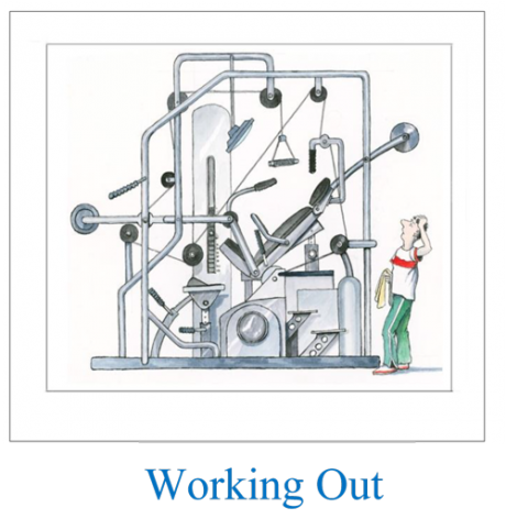 Whole body workout
